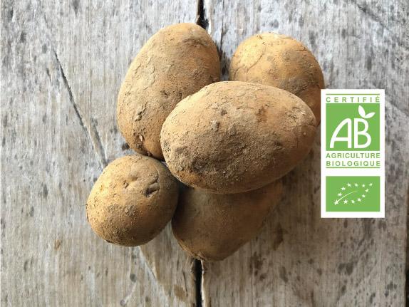 Pomme de terre bio label - Fort & Vert