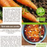 Fiche recette bio Tarte tatin carottes