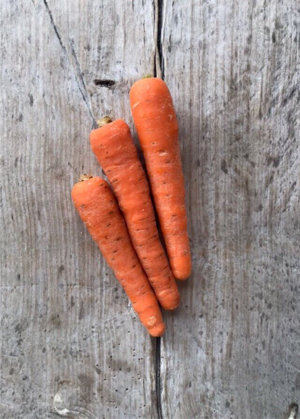 carotte-min