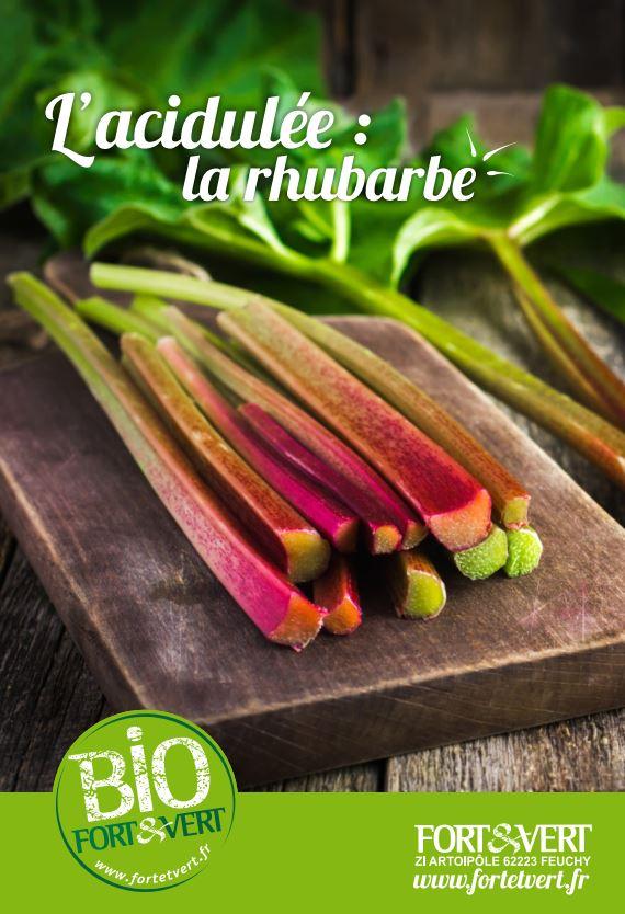 rhubarbe recette bio