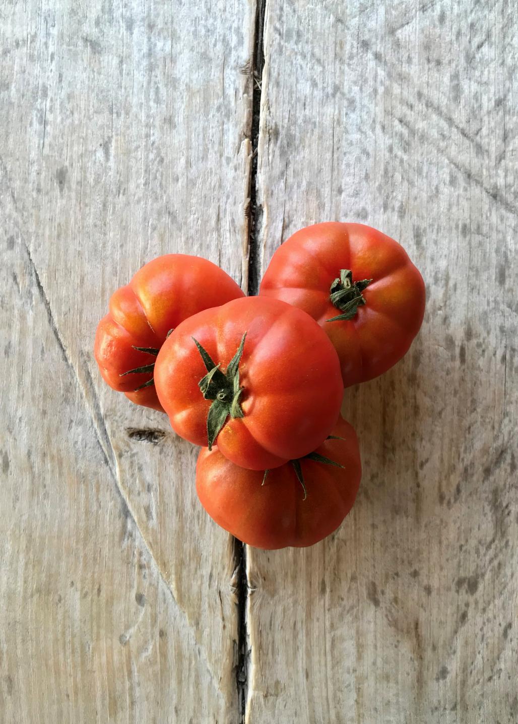 tomates-bio